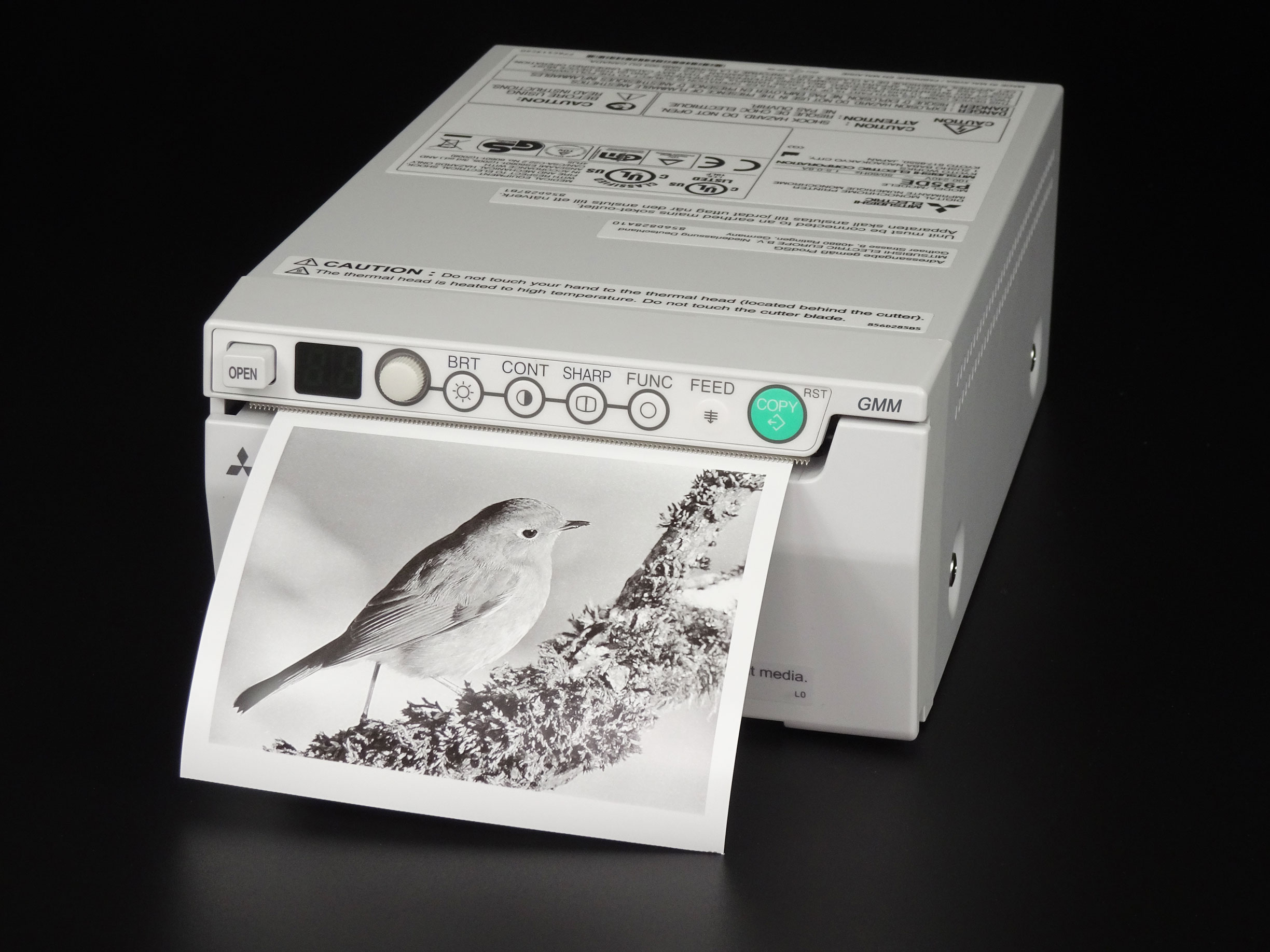 Mitsubishi Digital Monochrome Printer P95DE